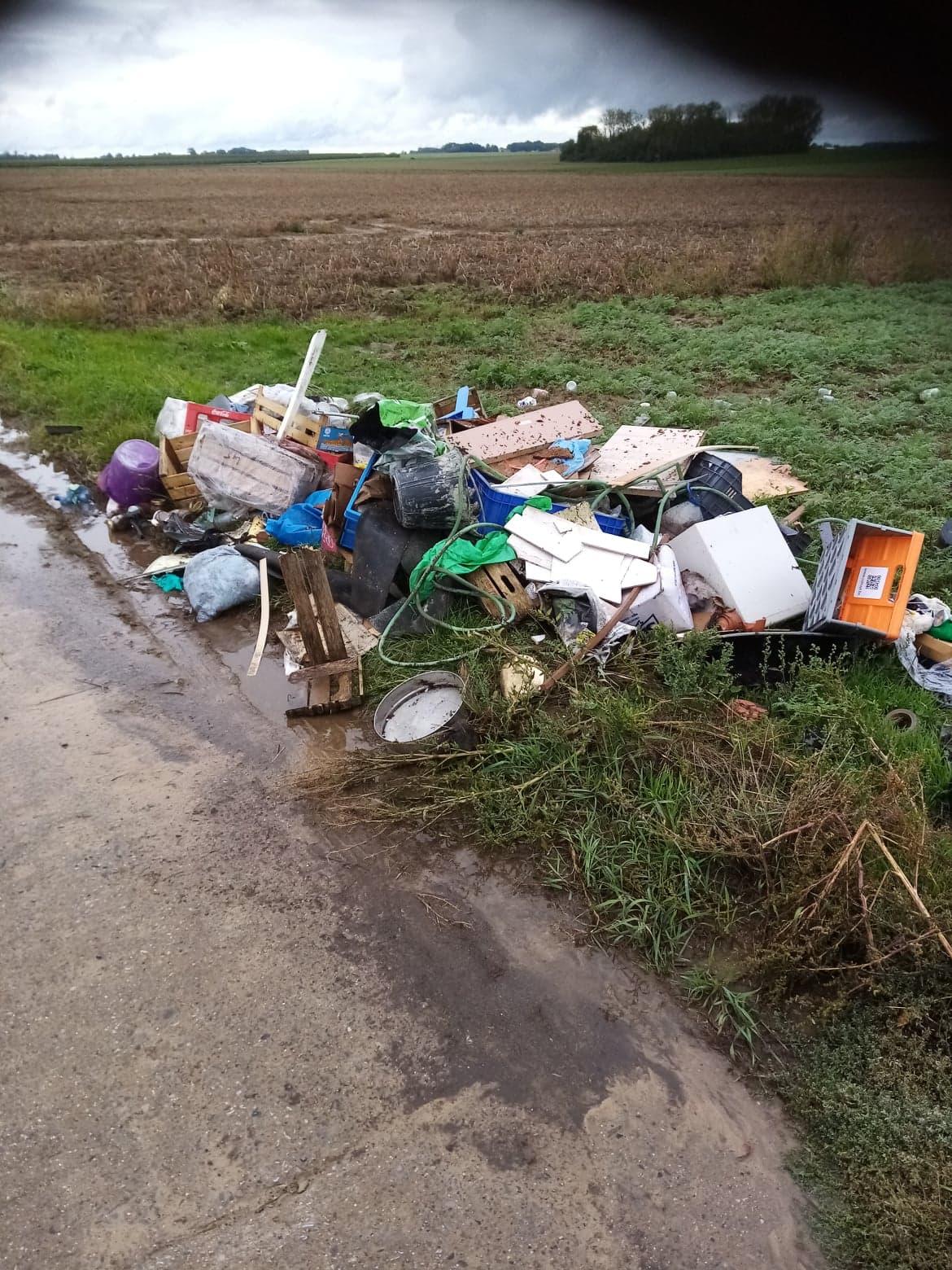 déchets sauvages2