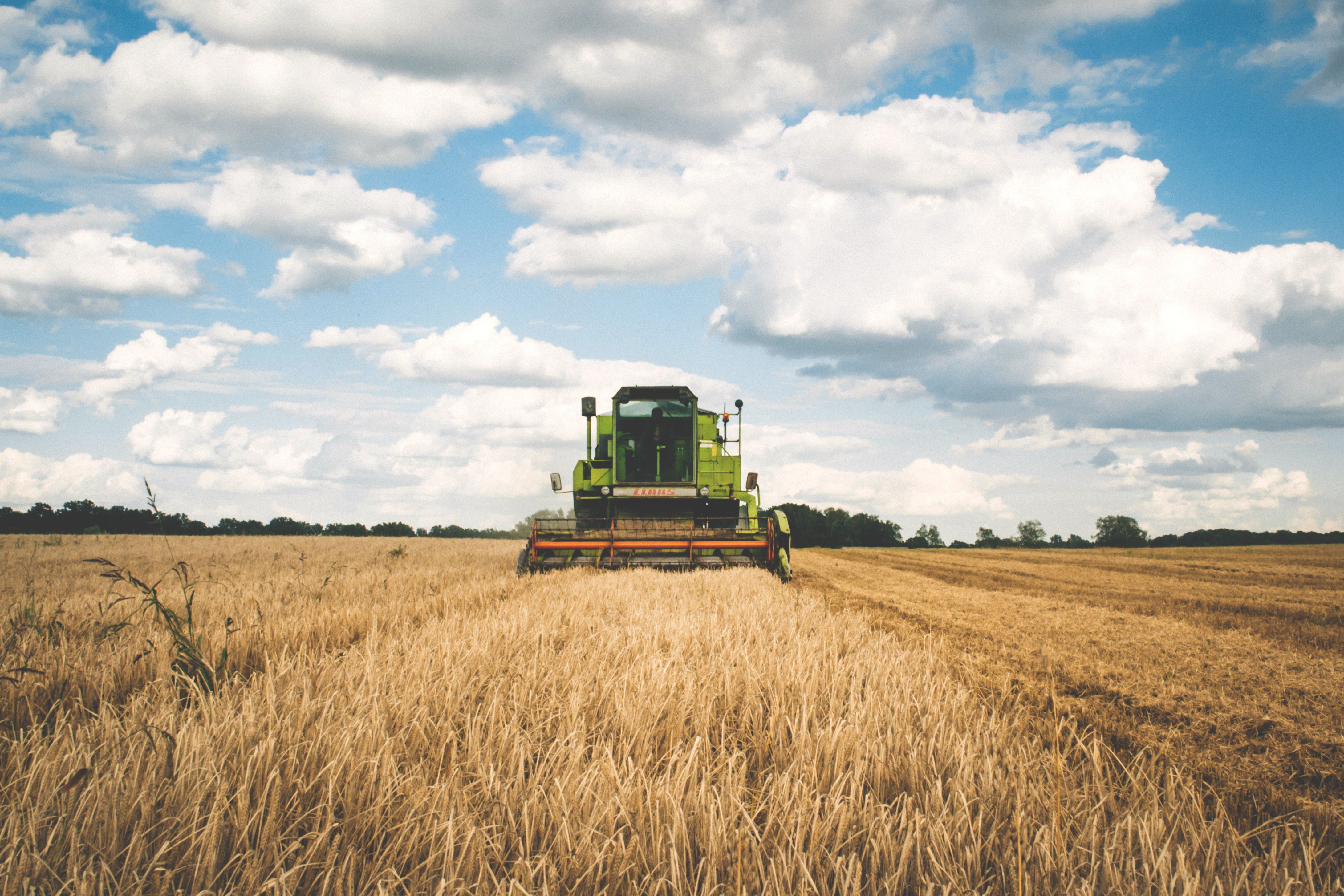 Agriculture libre de droit